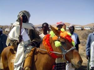 Horseman2_LasAanod_0601